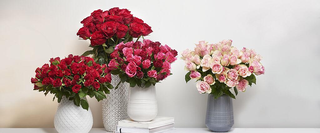 Reilukauppa-sertifioituja ruusut