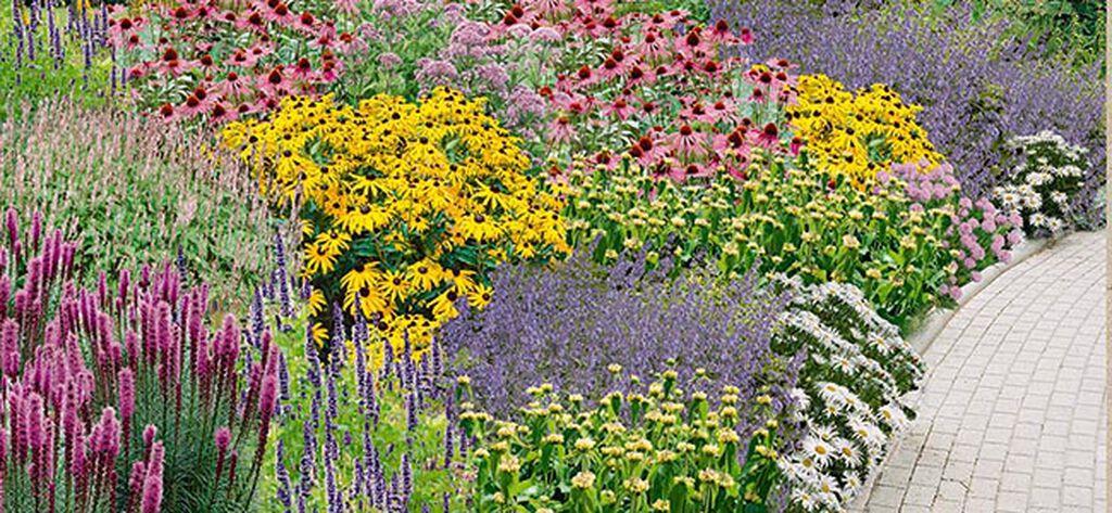 Kaksi valmiiksi suunniteltua kukkapenkkiä puutarhaasi