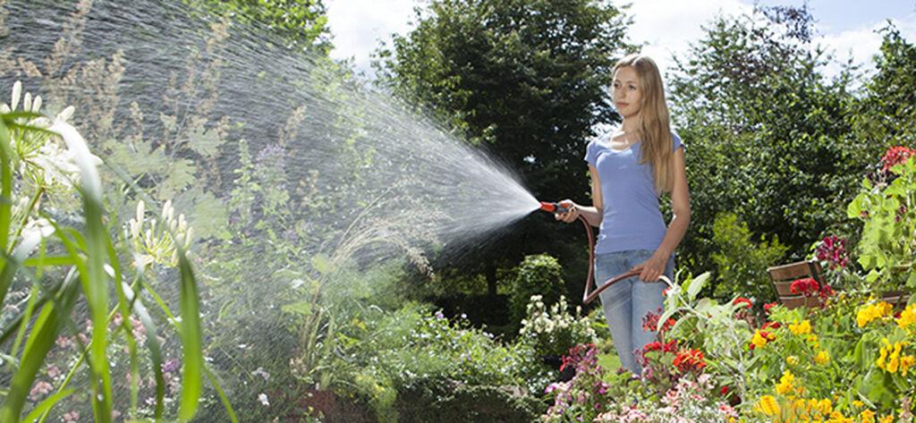 Näin onnistut puutarhakasvien ja kesäkukkien kastelussa kesällä