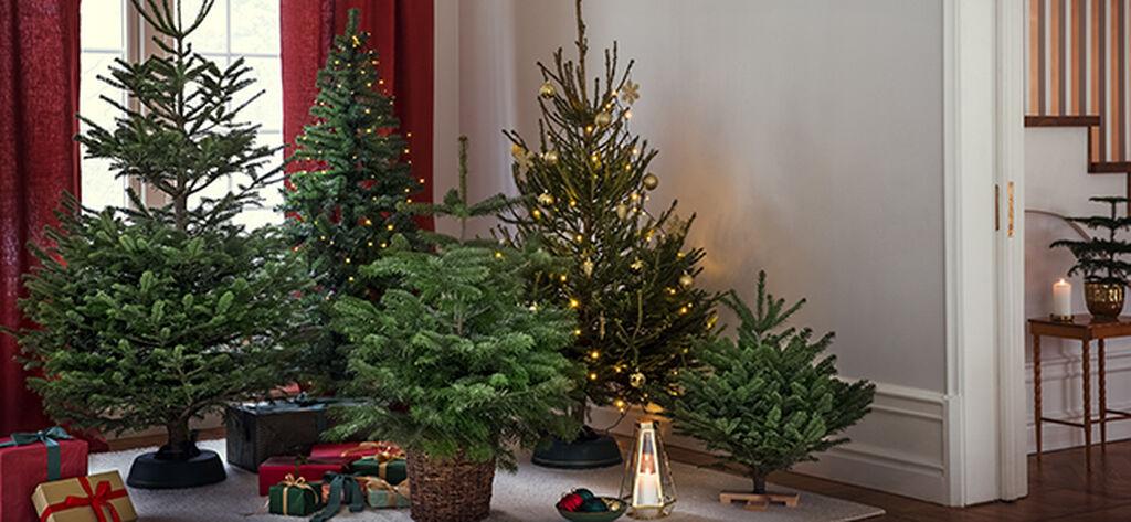 Klassinen, retro vai moderni joulukuusi?