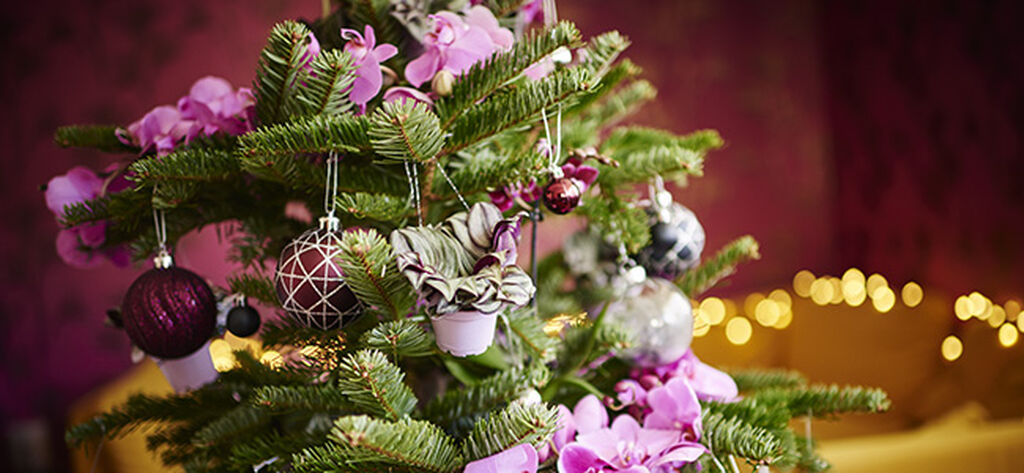 Joulukoristeet luovuutta arvostavalle