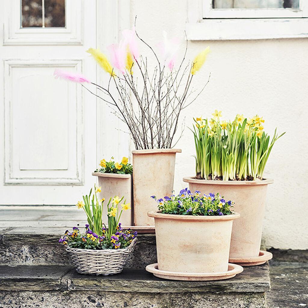 Huhtikuu – valo ja auringonpaiste, keväiset tuoksut ja sateet