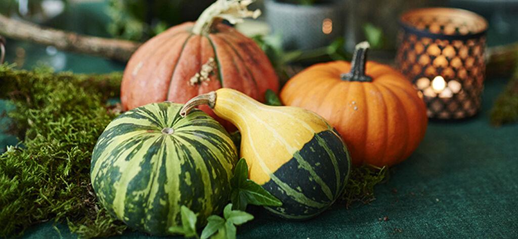 Näin koristelet halloween-juhlasi kukin ja kurpitsoin