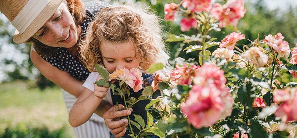 Luo unelmiesi kukkapenkki viidessä vaiheessa