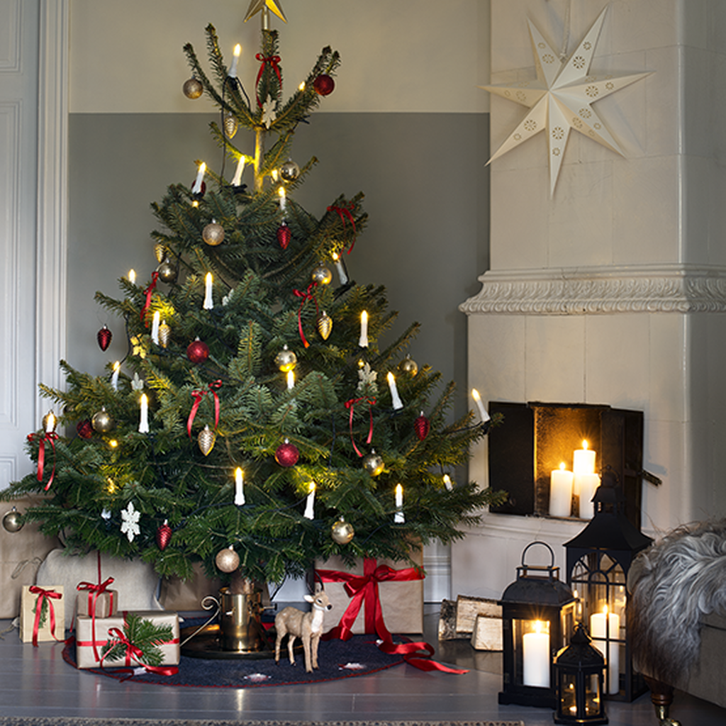 Joulukuuset perinteiden vaalijalle