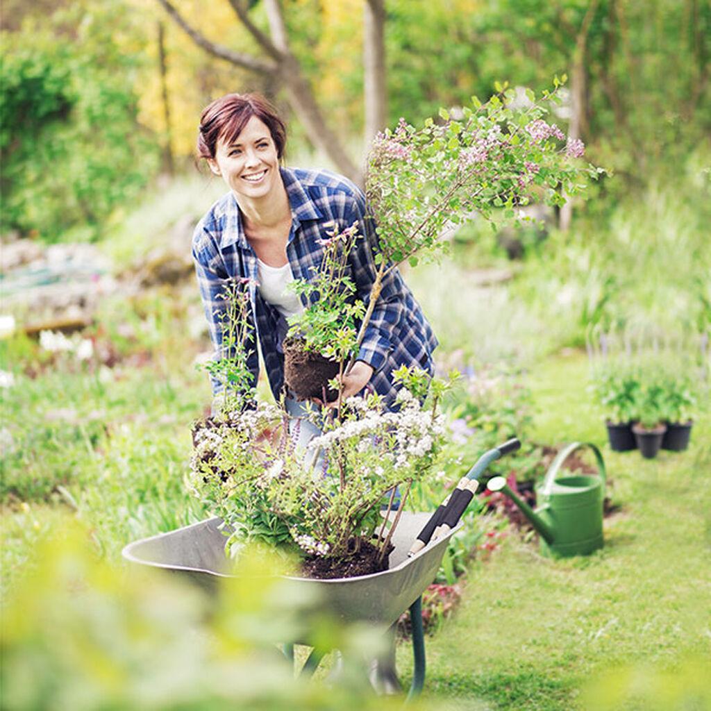 Puutarhanhoito on terveellinen harrastus