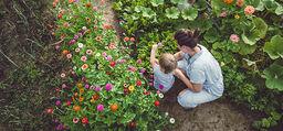 Puutarha on mielenrauhan tärkein huone