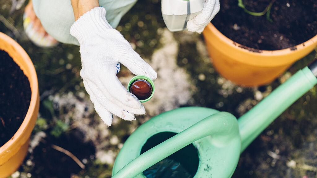Viljele ilmastoviisaasti – valmista itse lannoitevettä