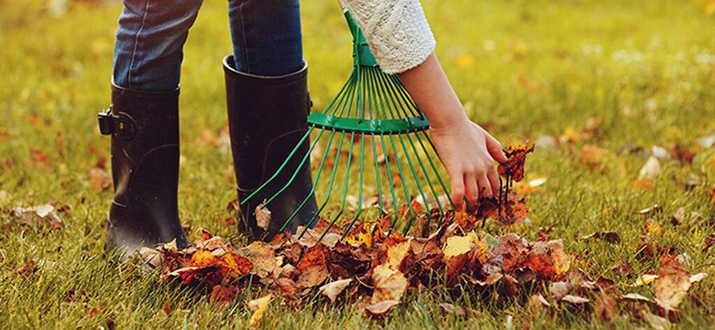 Seitsemän tapaa valmistella puutarha talven tuloa varten
