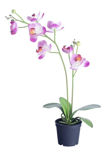 Orkidea ruukussa, K53 cm, vaaleanpunainen, tekokasvi