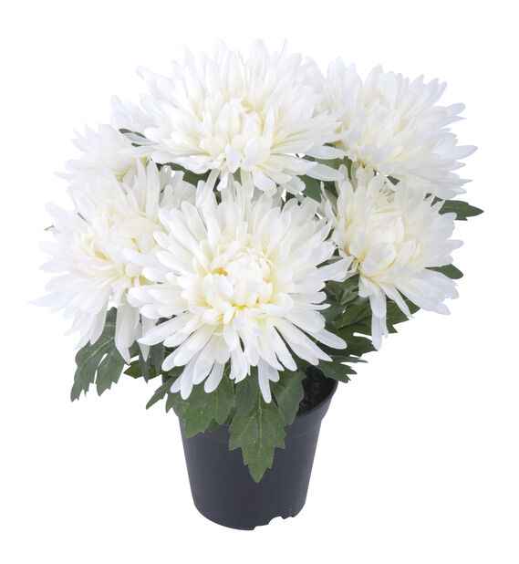 Krysanteemi, K37 cm, valkoinen, tekokasvi