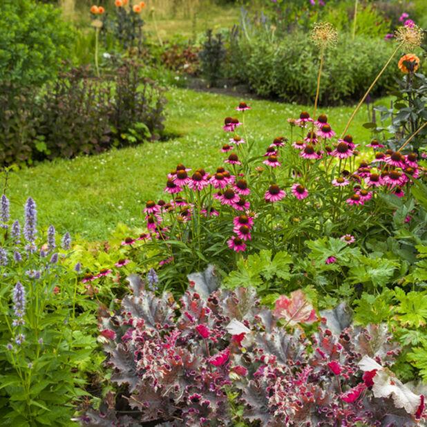 Perennat Romantic Garden, Ø26 cm, Monivärinen