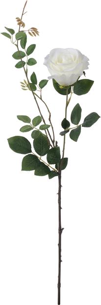 Tekokasvu ruusunoksa, Korkeus 56 cm, Punainen