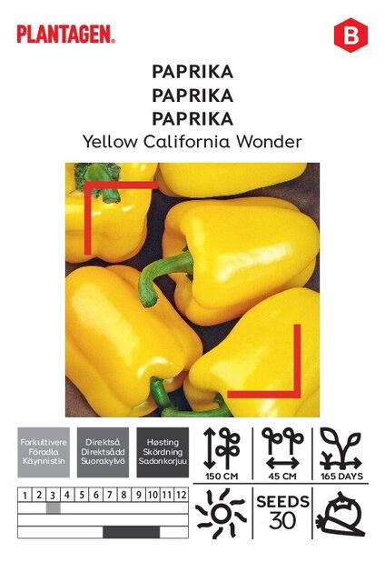 Makea chilipippuri 'Yellow California Wonder'