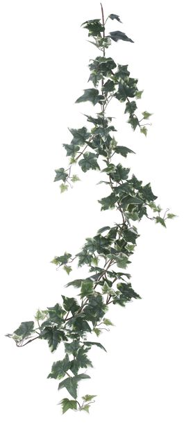 Murattiköynnös tekokasvi, Korkeus 115 cm, Vihreä