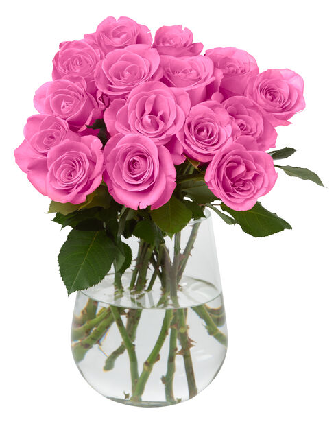 Ruusunippu 10 kpl 40 cm Pink