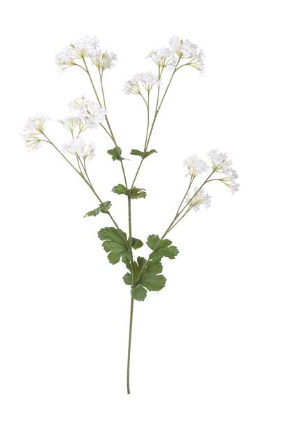 Poimulehti tekokasvi, Korkeus 62 cm, Valkoinen