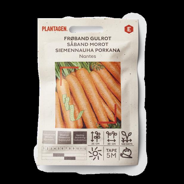 Siemennauha Porkkana 'Nantes'