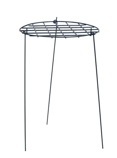 Perennatuki, Korkeus 57 cm, Vihreä