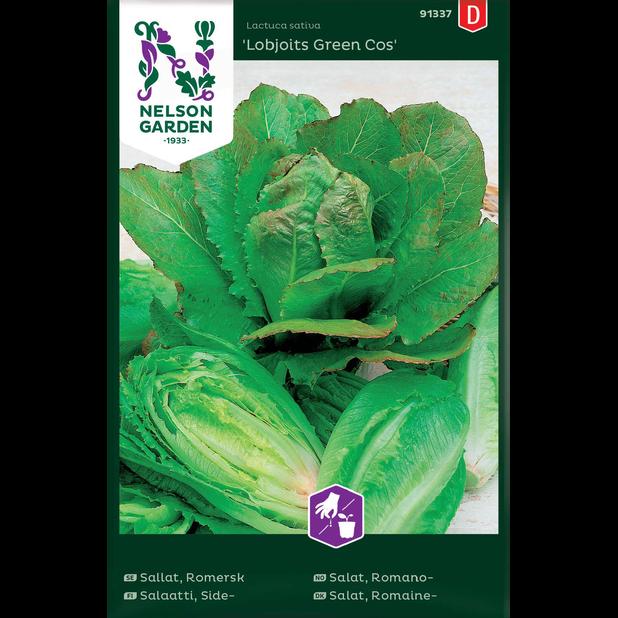 Sidesalaatti 'Lobjoits Green Cos', Monivärinen