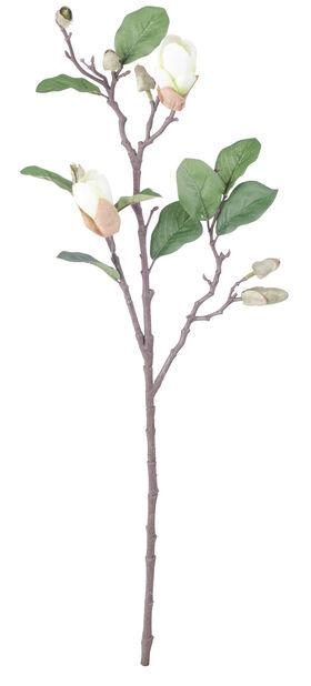 Magnolian oksa, K71 cm, valkoinen, tekokasvi