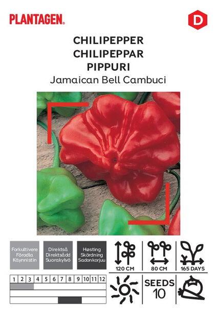Pippuri 'Jamaican Bell Cambuci'