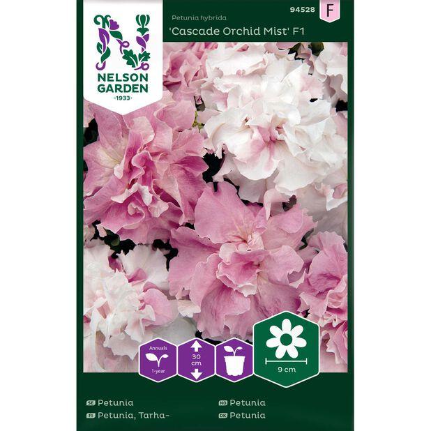 Tarhapetunia 'Cascade Orchid Mist' F1, Monivärinen