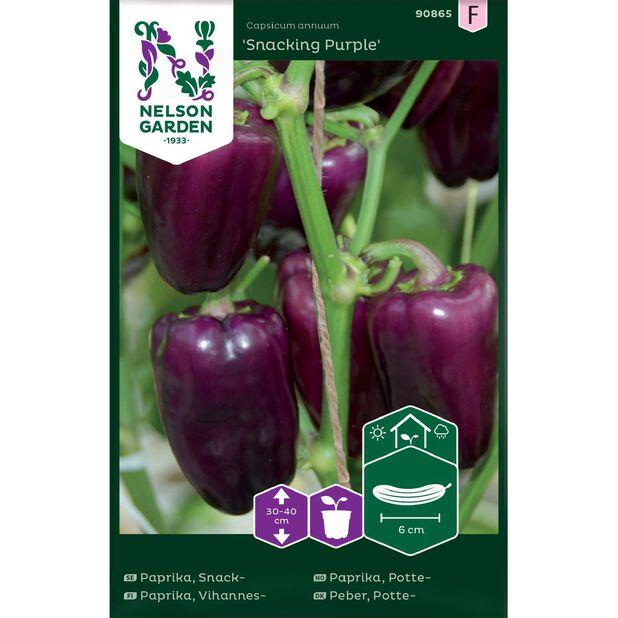 Vihannespaprika 'Snacking Purple', Monivärinen