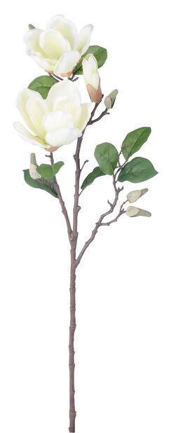 Magnolia, K71 cm, valkoinen, tekokasvi