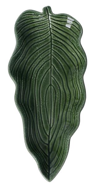 Koristevati lehti, Korkeus 3 cm, Vihreä