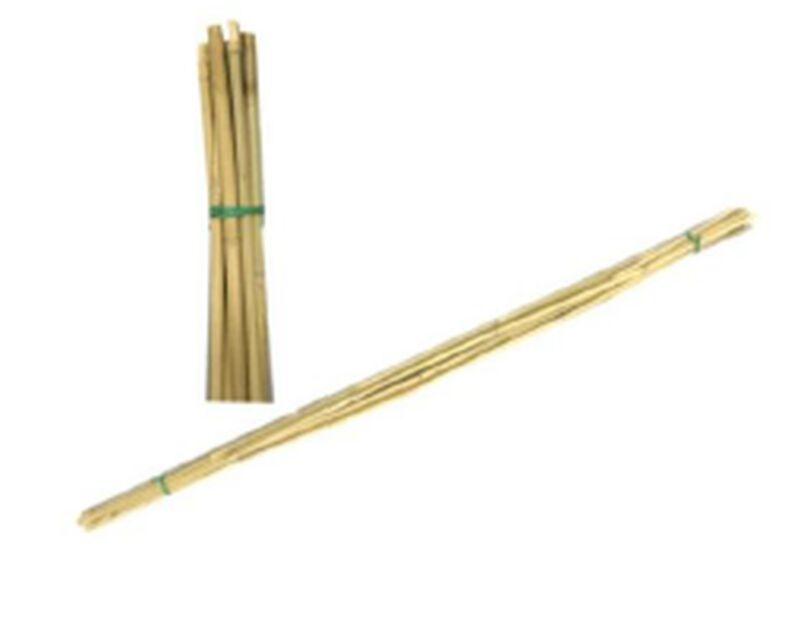 Kukkakeppi Bambu , Korkeus 120 cm, Beige