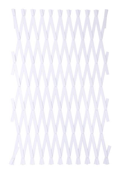 Köynnössäleikkö, Korkeus 180 cm, Valkoinen
