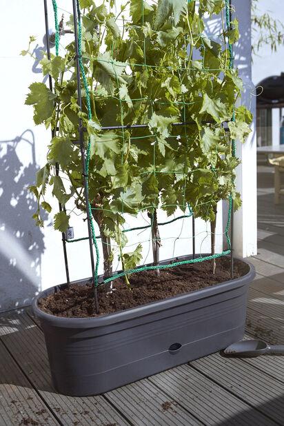 Vihannestuki ELHO Green Basics, Pituus 80 cm, Musta