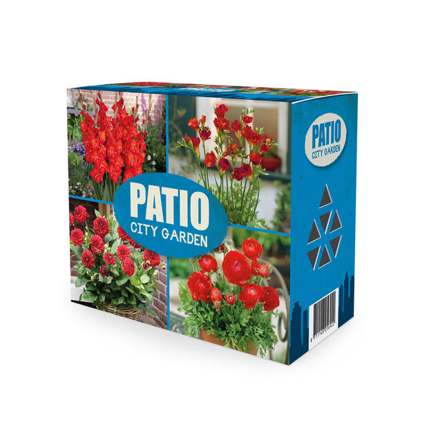 Kukkamukulalajitelma Patio city garden, Punainen
