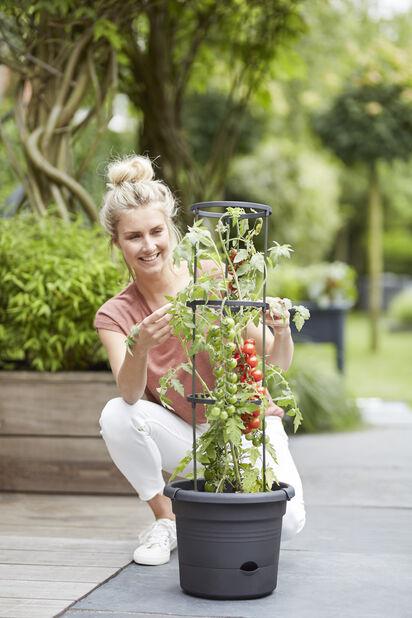 Tomaattiruukku Green Basics, Pituus 33 cm, Musta