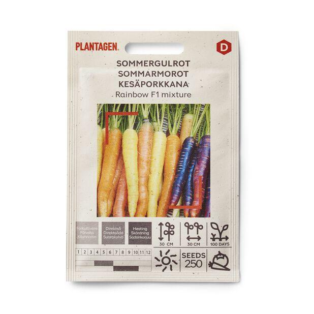 Kesäporkkana 'Rainbow F1 mixture'