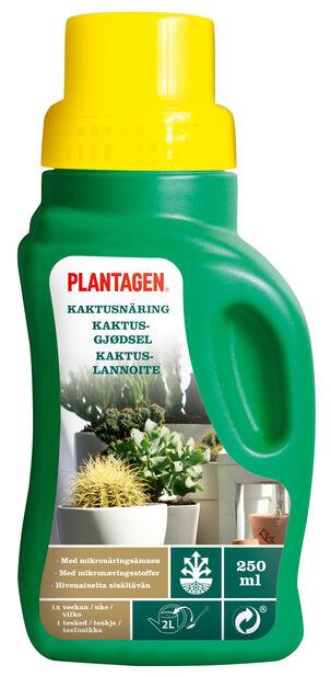 Kaktuslannoite, 250 ml, Vihreä