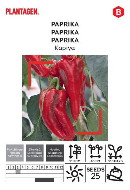 Makea chilipippuri 'Kapiya'