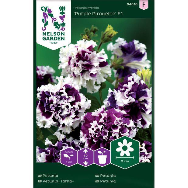Tarhapetunia 'Purple Pirouette' F1, Monivärinen