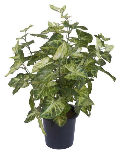 Viherkasvi tekokasvi, Korkeus 39 cm, Useita värejä
