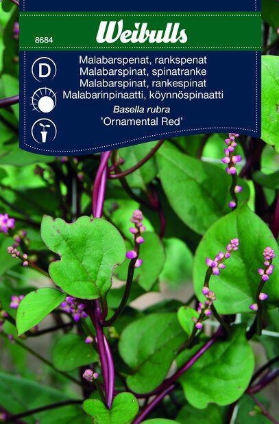 Malabarinpinaatti