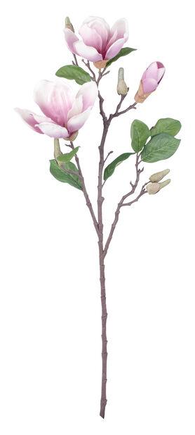 Magnolian oksa tekokasvi, Korkeus 71 cm, Valkoinen