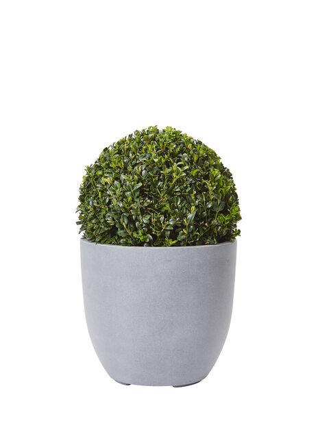 Puksipuupallo, Korkeus 30 cm, Vihreä