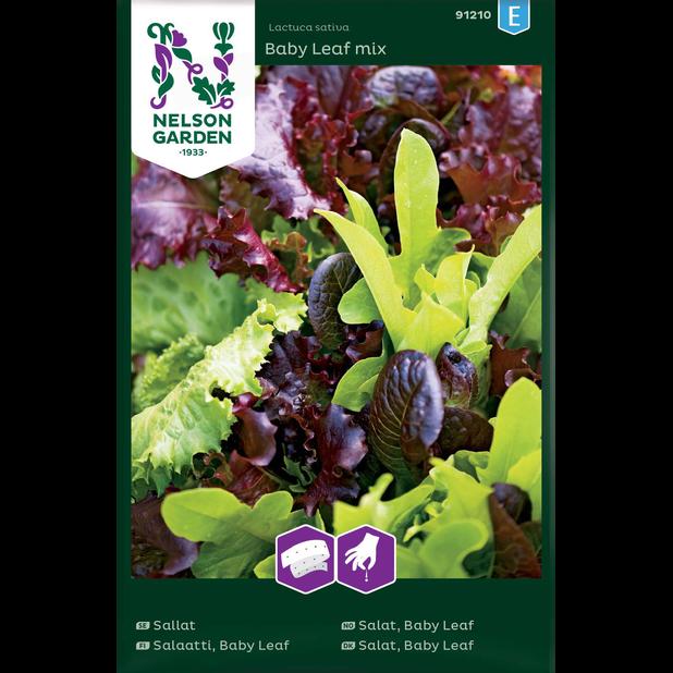 Salaatti 'Baby Leaf Mix', Monivärinen