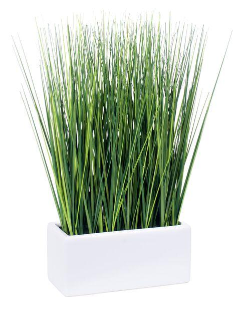 Koristeheinä tekokasvi, Korkeus 46 cm, Vihreä
