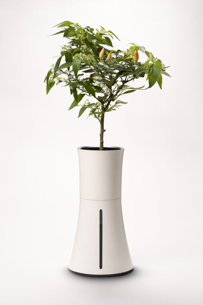 Hydroponinen ruukku Botanium, Valkoinen
