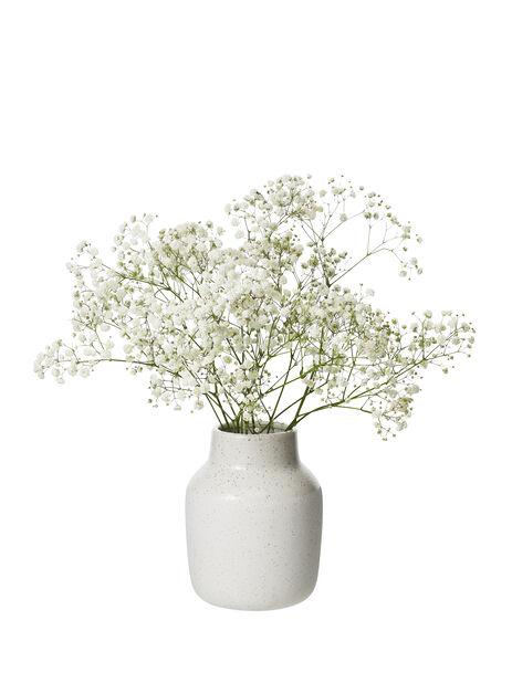 Morsiusharso 5-pakk, Korkeus 60 cm, Valkoinen