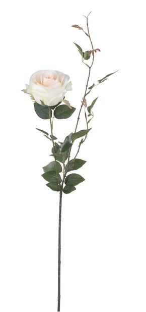 Tekokasvi ruusu, Korkeus 56 cm, Punainen