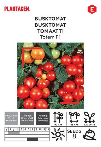 Tomaatti 'Totum F1'