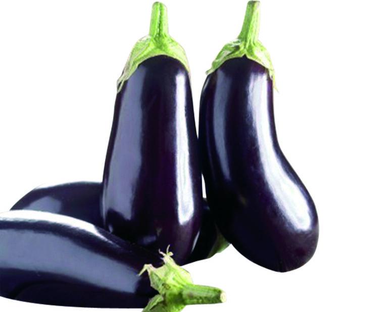 Munakoiso 'Oblong purple', Ø12 cm, Violetti